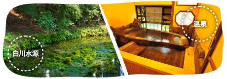 熊本の白川水源と温泉